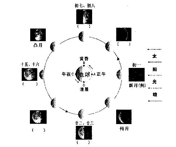 苏教版小学科学五年级上册导学案-第一单元-4-看月亮